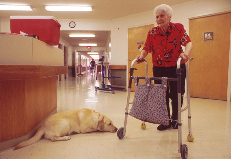 GettyImages-663713 care home stock