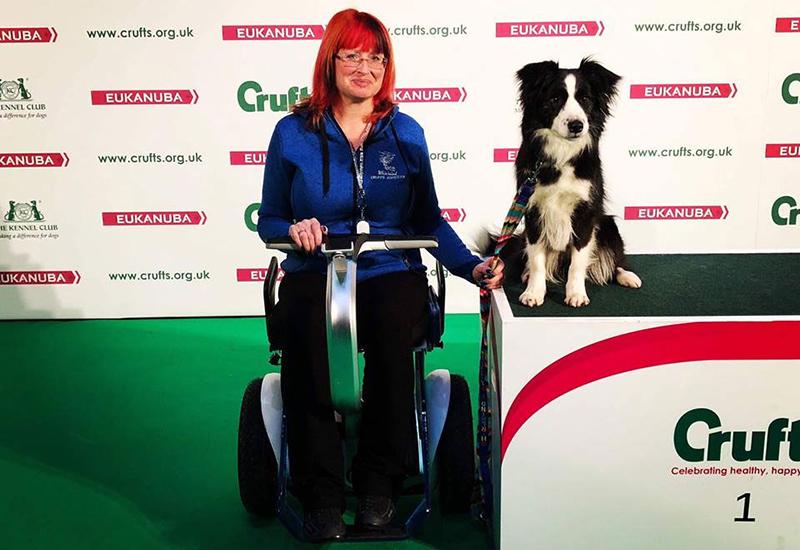 Nino-wheelchair-at-Crufts