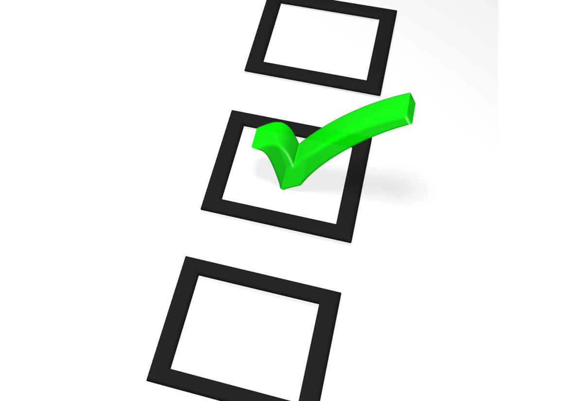 blank-survey-template-2-vote-1236390