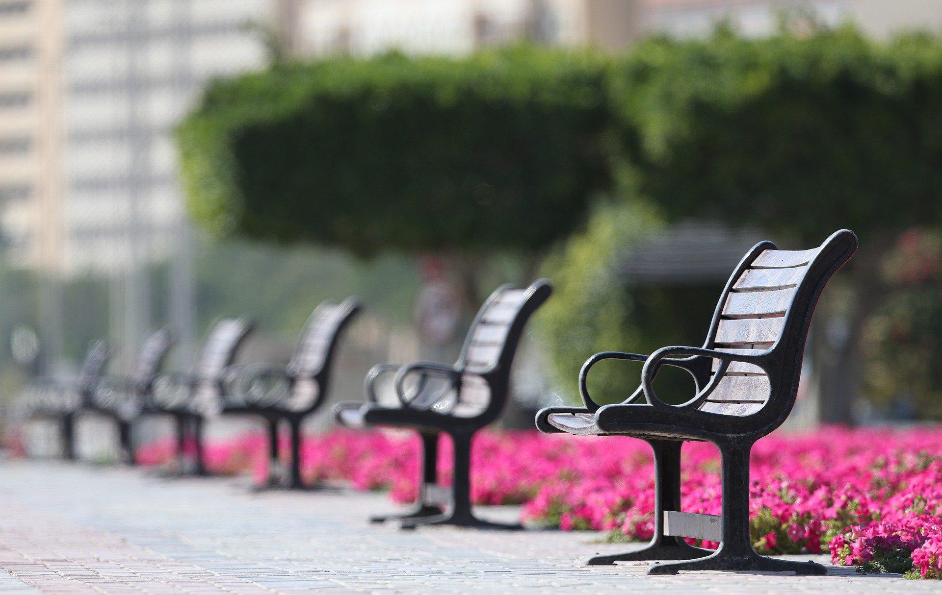 bench-5017748_1920