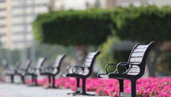 bench-5017748_1920 (1)