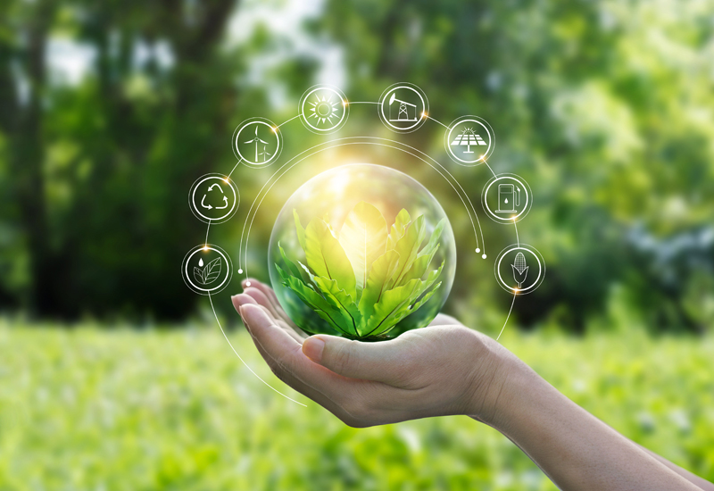 Hands protecting globe of green tree on tropical nature summer background, Ecology and Environment concept